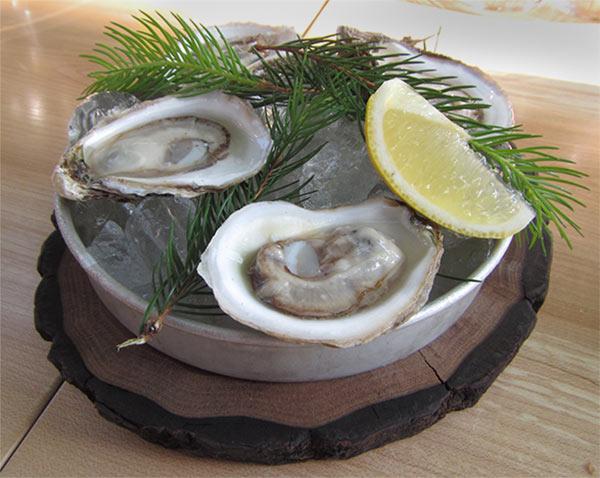 balnea-spa-oysters