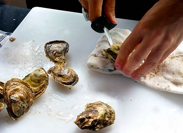 doca-oysters